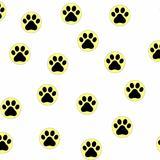 catsfootprint