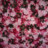 redrosefairy