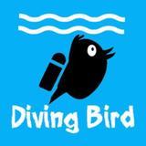 divingbird