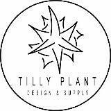 tilly_plant