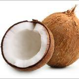 coconut_tan