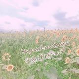 japan_luvshare