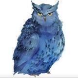owl999