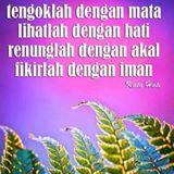 rosman_my