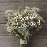 toolaloola.clothing.co