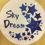 skydream.co