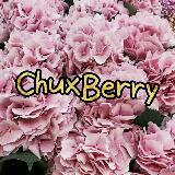 chuxberry