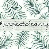 projectcleanup.ph