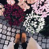 wardro_be