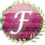 francinewu