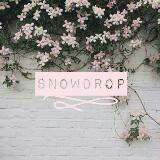 snowdrop_shop
