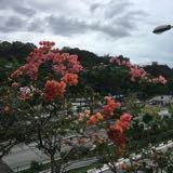 beautyhaula_