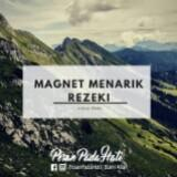 q2n_magnet