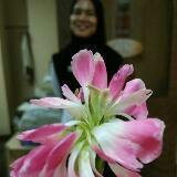 lyana_beauty
