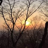 koori_tsang