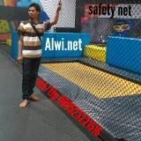 alwinet