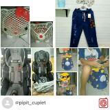 pipit_cupiet