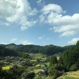 lennox_chan