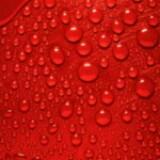 redshop2