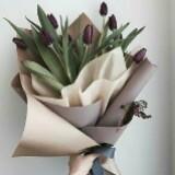 tulipbulb