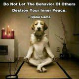 peace_doggy
