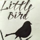 litlle.birdclothing