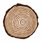holzhome