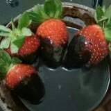strawberry_choc