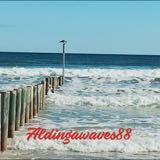 aldingawaves88