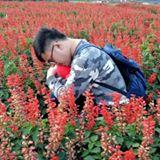 yonghua_11.0323