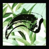 singapore_fossils