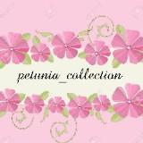 petunia_collection