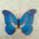 ms.bluebutterfly