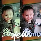 yangnew