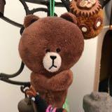 bear_88