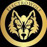 electrowolf.singapore