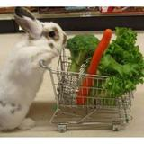 rabbitloveshopping