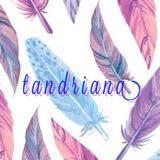 tandriana