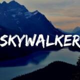 skywalker0203
