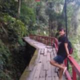 gumilang_
