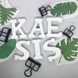 the_kaesis