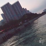 squishy_shop.