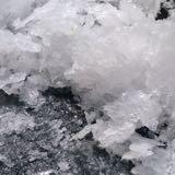 sea.salt