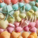 she.sells.seashells