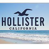 hollisterseller