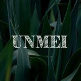unmei_ph