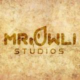 mr.owli