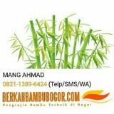 mangahmad3687