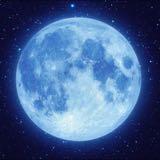 moonnim0404