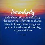 serendipity1208